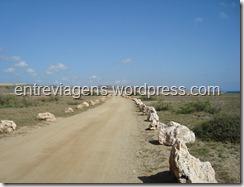 ARUBA 2011 009