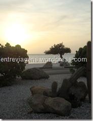 ARUBA 2011 703