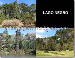 LAGO NEGRO 2