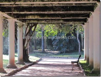 Jardim Botânico 2012 184