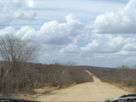 A estrada em que não víamos viva alma!