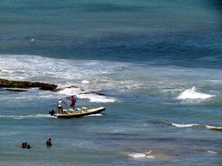 Jangada que leva os turistas até o barco para o passeio de visualização de golfinhos.